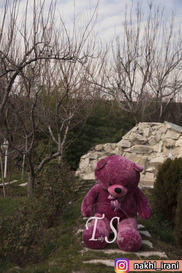 خرس بنفش ۲۳۳۱