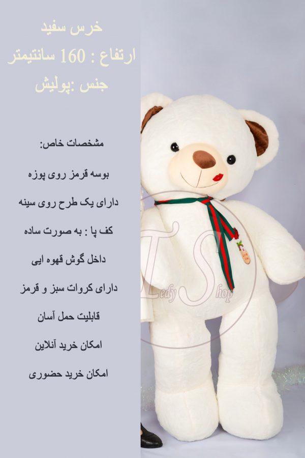 خرس-سفید-بزرک-شاسخین