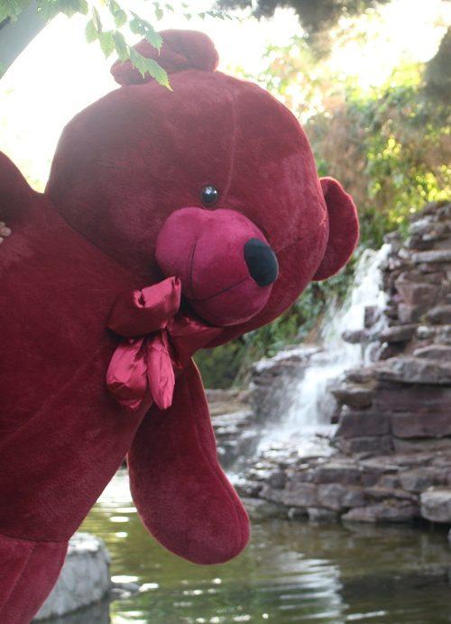 خرس زرشکی 190 سانتی