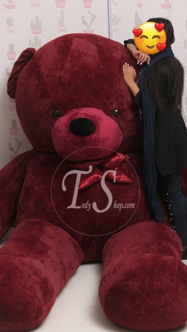 خرید عروسک تد
