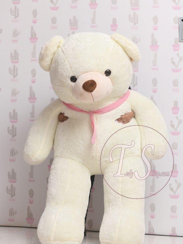 خرید عروسک خرس ولنتاین
