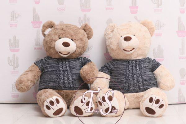 خرس-کرم-رنگ-خوشگل