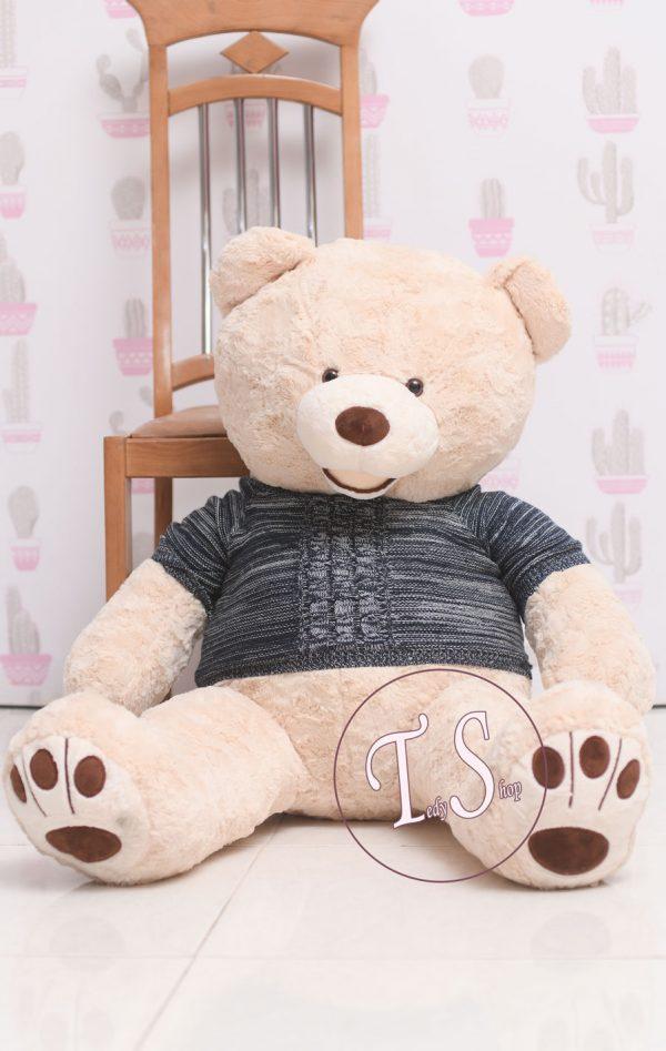 خرس-گریزلی-لباس-دالر