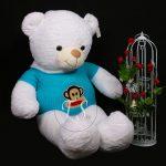 خرس سفید تپل