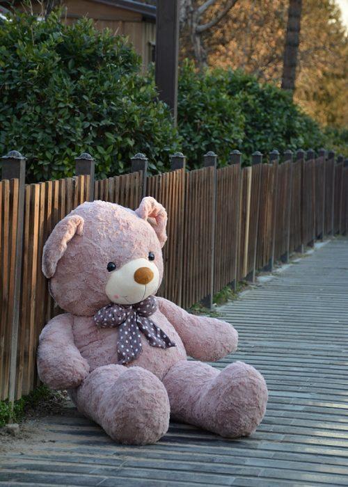 خرس راس صورتی