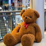 خرس فرفری قهوه ای تدی