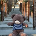 خرس قهوه اذیی دو متر و بیست سانتی