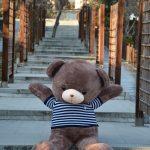 خرس قهوه ایی دو متر