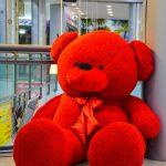 خرس ولنتاینی جذاب