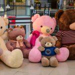 خرس کده تدی شاپ