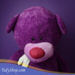 TED_0512
