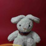 خرگوش سفید ۲۵سانتی