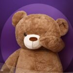 TED_050082