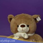 TED_0562