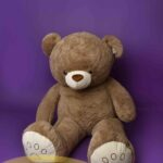 TED_0573