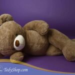 TED_0580