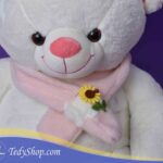 TED_0589
