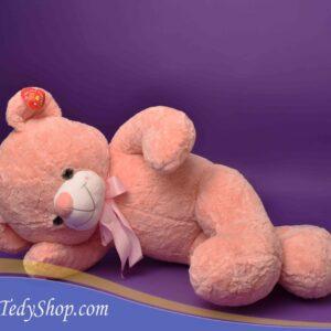 خرس گلبهی پاپیون دار بزرگ