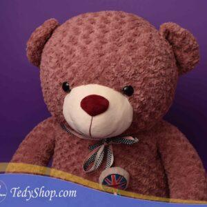 عروسک خرس کالباسی بزرگ ارزان
