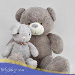 خرس طوسی ۱۷۰ سانتی