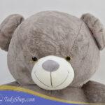 خرس طوسی ۱۷۰ سانتی فروشگاه تدی شاپ