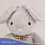 خرگوش ۵۰ سانتی طوسی