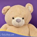 خرس ۱۷۰سانتی فروشگاه تدی شاپ