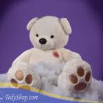 خرس سفید ۱۷۰ سانتی فروشگاه تدی چاپ