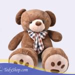 خرس شکلاتی دومتری فروشگاه تدی شاپ
