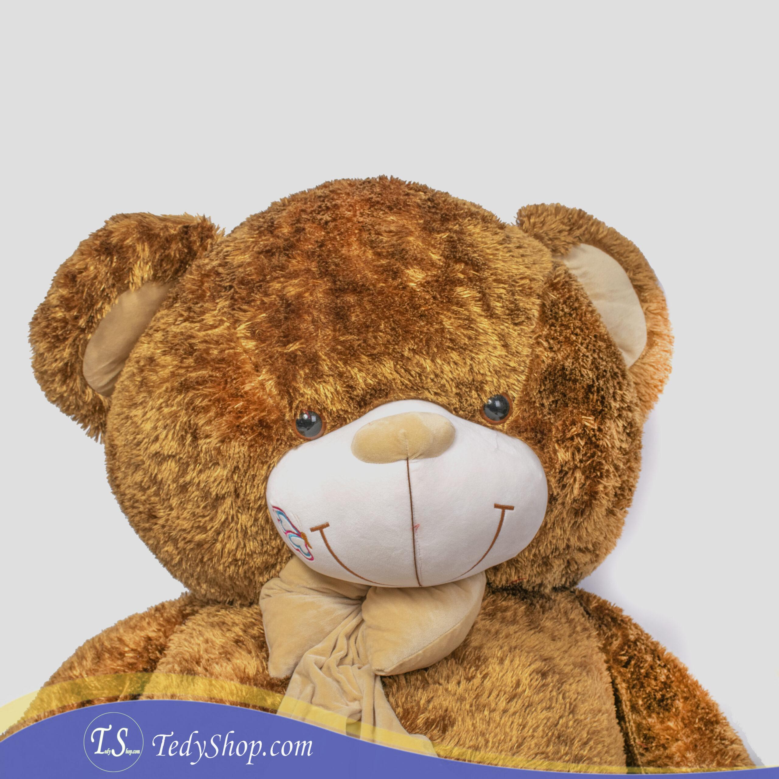 خرس قهوه ایی ایرانی دو متر و سی سانتی بسیار بزرگ