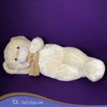خرس سفید ایرانی بزرگ