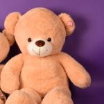 خرس-عروسکی-کرم-۱