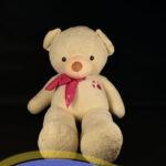 خرس-سفید-دو-متری-پاپیون-دار۳