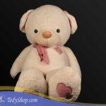 خرس-سفید۲