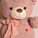 خرس-صورتی-بزرگ۵