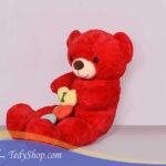 خرس-تدی